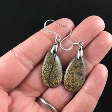 Chohua Jasper Stone Jewelry Earrings #K4xfssKFkP4